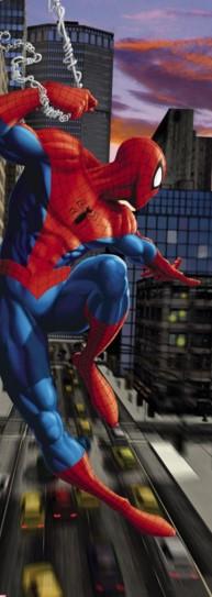 Homem-Aranha 1-437